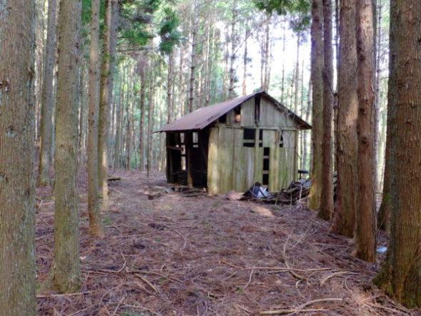 林業用廃屋外観