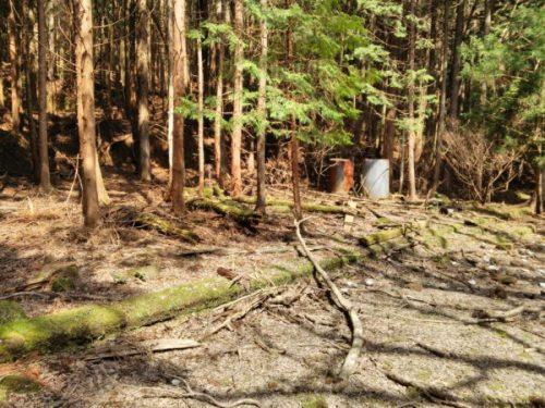 大楓前に残された基礎