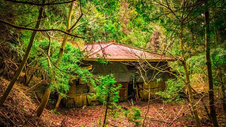 【千葉県】【廃村】取り残された謎の廃墟~湯ヶ滝廃集落
