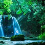 【千葉県】【秘境】化け白蛇伝説の残る秘瀑、田代滝