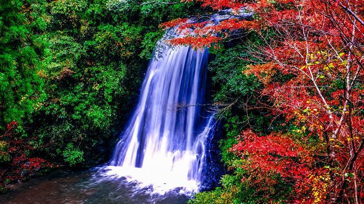 【千葉県】【秘境】四方木不動滝~房総の隠れた名所