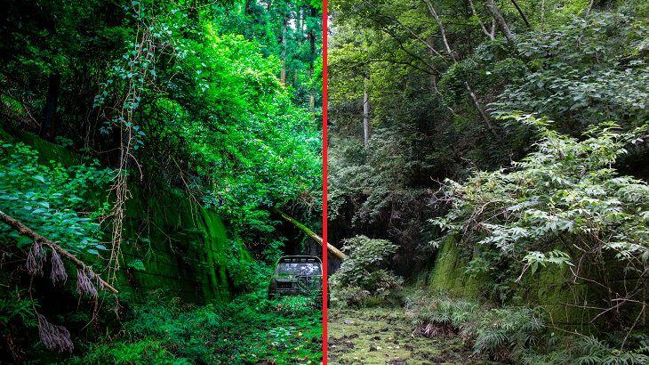 Lightroomで廃道の写真を「極限」まで美しく編集する方法