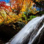 【長野県】【観光地】轟クハ雷鳴ノ如シ!滝の裏を歩ける雷滝